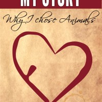 My Story - Why I chose Animals